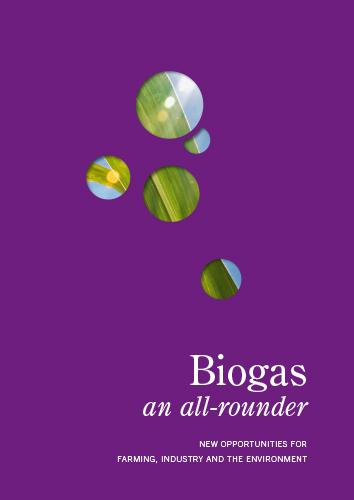 IBBG_Cover-Englisch purple