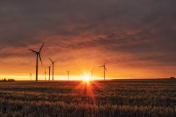 Foto von Windkraftanlagen auf Stoppelfeld im Morgenrot