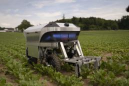 kleiner Agrarroboter im Feld