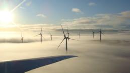 Mehrere Windräder im Nebel. Der Himmel ist hellblau und leicht bewölkt. Die Sonne scheint dem Betrachter entgegen.